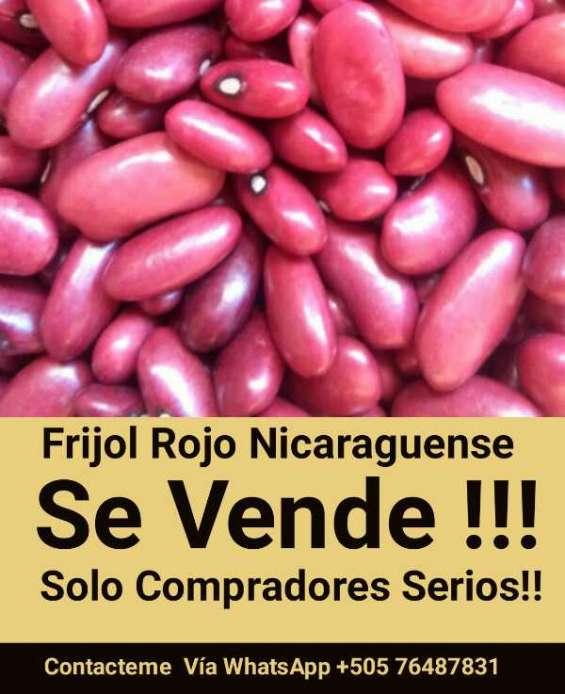 Frijol rojo nicaraguense